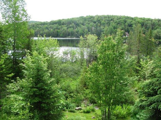 Entrelacs, Kanada: Vue du lac de la terrasse