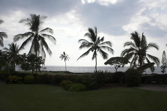Kona Coast Resort : View from the grounds