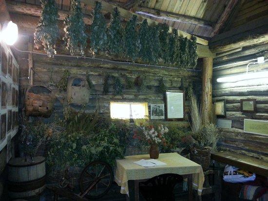 Pushkin's Nanny's House Museum