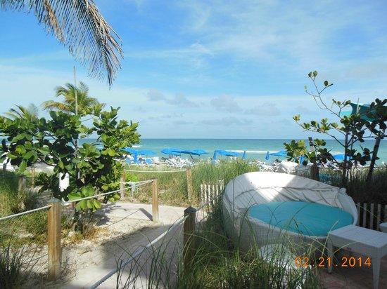 Trump International Beach Resort: Vista desde la zona del bar de playa