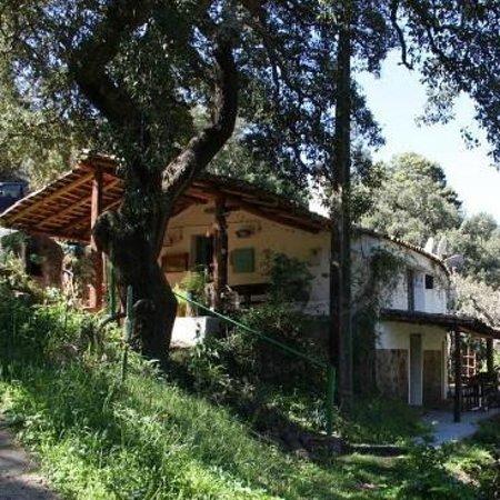 Casa Monchique: Zijaanzicht