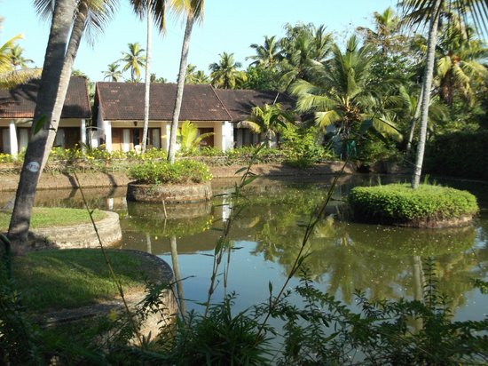 Abad Whispering Palms Lake Resort: View from reception