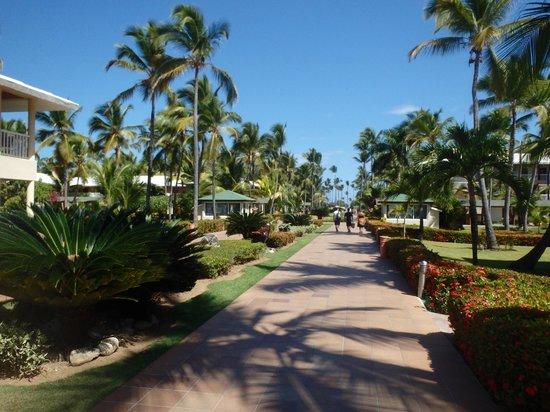 Sirenis Punta Cana Resort Casino & Aquagames: allee
