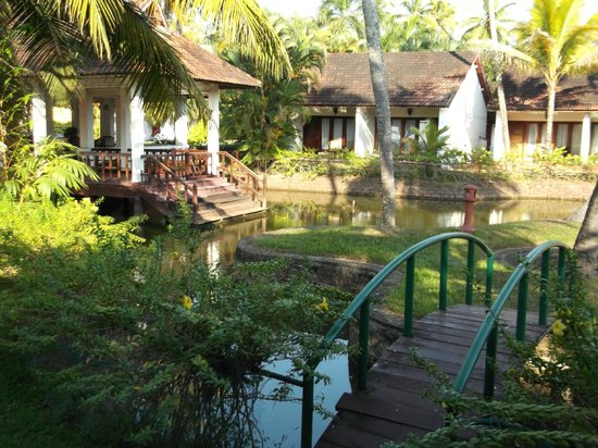 Abad Whispering Palms Lake Resort: View from room