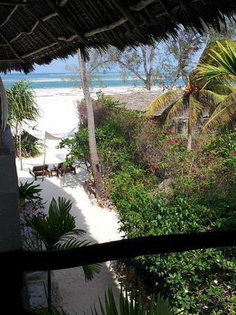Mvuvi Resort: foto dalla terrazza del Resort