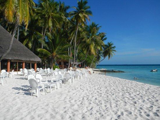 Hotel Paradise Island Resort Maldives Forum