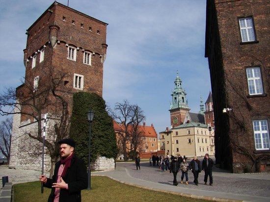 Krakow Free Walking Tour: Wawel hill