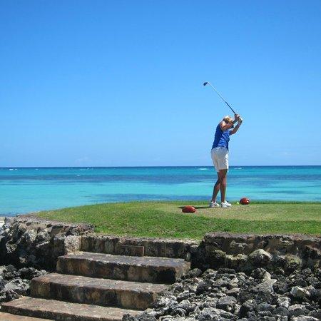 The Westin Puntacana Resort & Club: La Cana- Tortuga Bay Golf Course