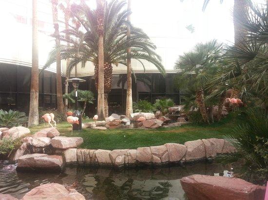Flamingo Las Vegas Hotel & Casino : parque hermoso