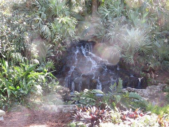 Ormond Memorial Art Museum: The waterfalls