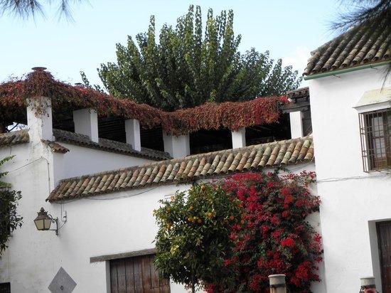 Hostal El Triunfo: Uma casa no centro histórico