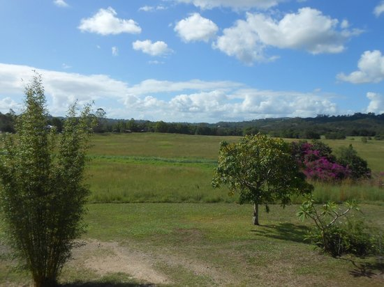 Gridley Homestead B&B: View from the verandah
