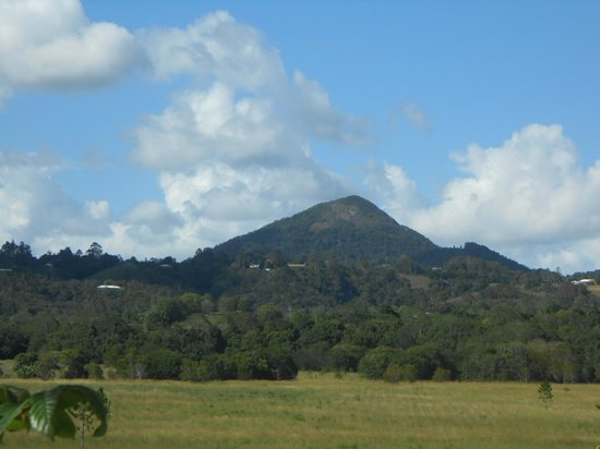 Eumundi Gridley Homestead B&B: View from the verandah