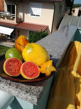 Pousada dos Artistas: Frutos típicos , fuimos al mercado de Canasvieiras