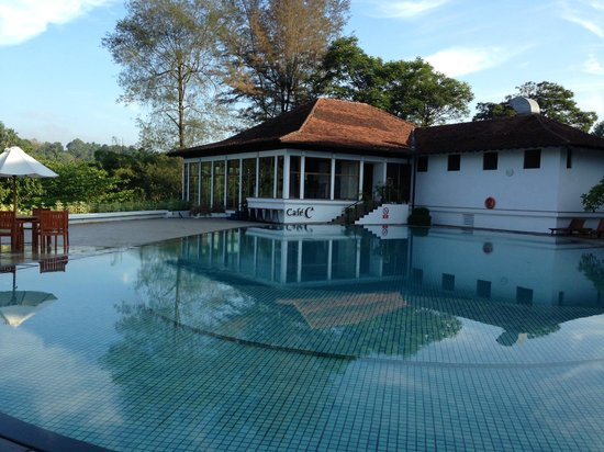 Cinnamon Citadel Kandy: Pool view