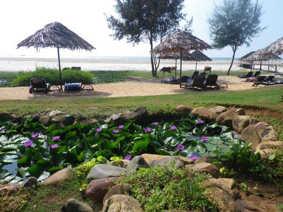 The Zuri White Sands Goa Resort & Casino: Strand