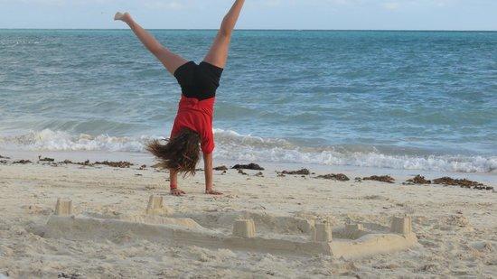 Viva Wyndham Fortuna Beach : Great beach!!
