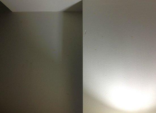 "Washington Suites Alexandria: ""spray of spots"" above headboard"