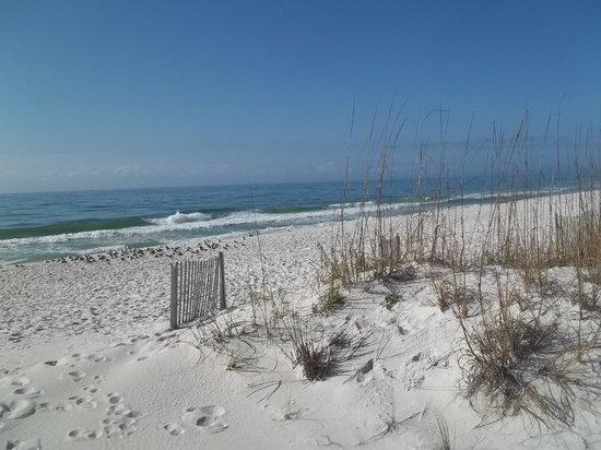 Pensacola Beach : Public Beach