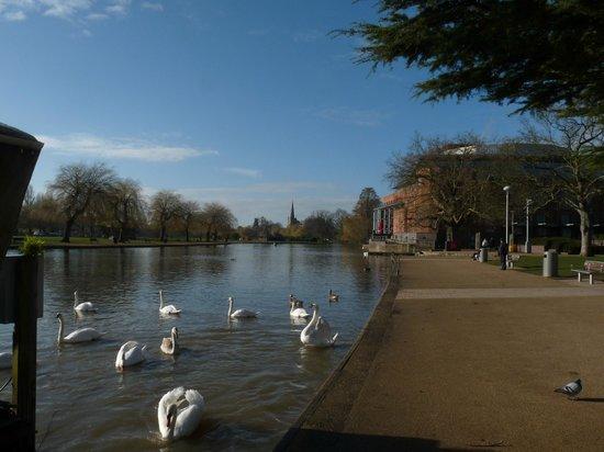 The Stratford, A QHotel : The RSC & river Avon