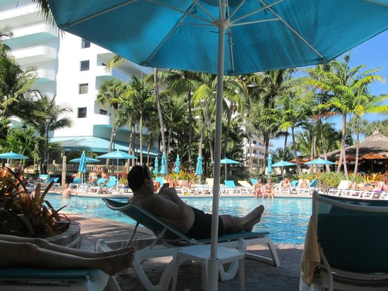 Hotel Riu Plaza Miami Beach: Superbe piscine dans la palmeraie !