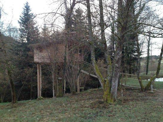 Les Cabanes du Marodier : Cabane Ecureuil