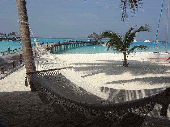 The Sun Siyam Iru Fushi Maldives : Vue sur Pontons