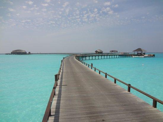 The Sun Siyam Iru Fushi Maldives: Pontons