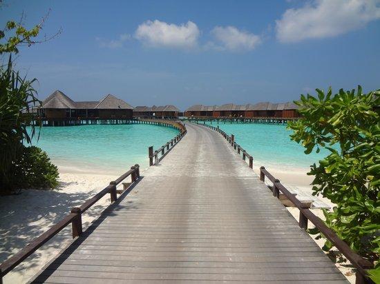The Sun Siyam Iru Fushi Maldives : Villas pilotis