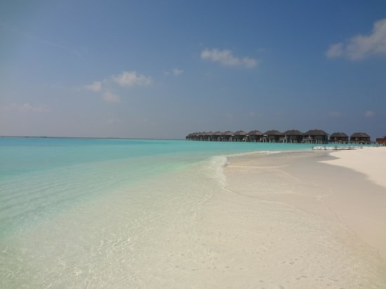 The Sun Siyam Iru Fushi Maldives: plage côté Ouest