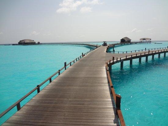 The Sun Siyam Iru Fushi Maldives : Pontons