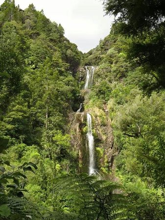 Waitakere City, Nowa Zelandia: Piha Waterfall