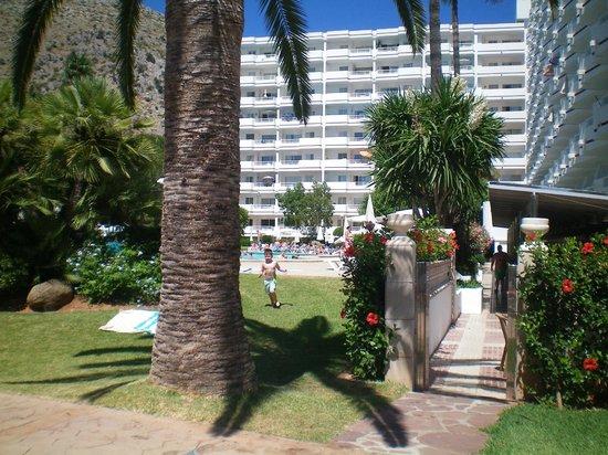 Apartamentos Siesta I: Garden