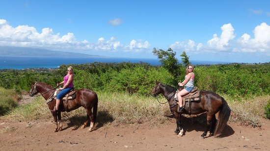 Ironwood Ranch: Above Napili.