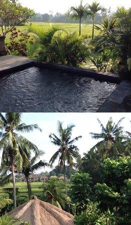 Alaya Resort Ubud: Children's pool and rice field beside the hotel