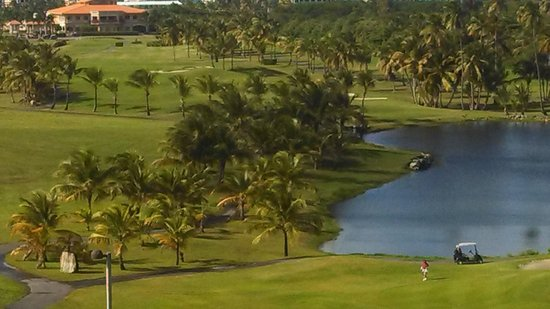 Melia Coco Beach : Trump Championship Golf Course - View from #8 Tee
