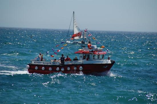 Mermaid Pleasure Trips: Another boats photo of the Mermaid II