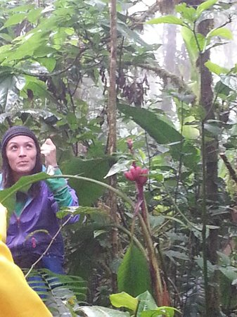 Villa Blanca Cloud Forest Hotel and Nature Reserve: Our nature guide Ingrid on the nature trail