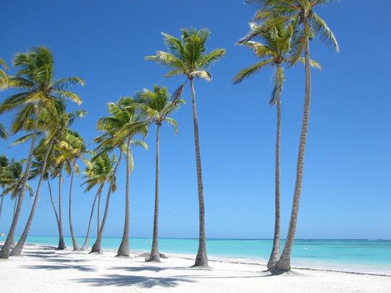 Tripadvisor Dominican Republic Juanillo Beach