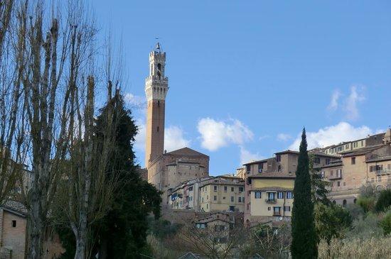 All'Orto de' Pecci: Torre del Mangia