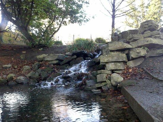 Phoenix Park: Мини-водопадик :)
