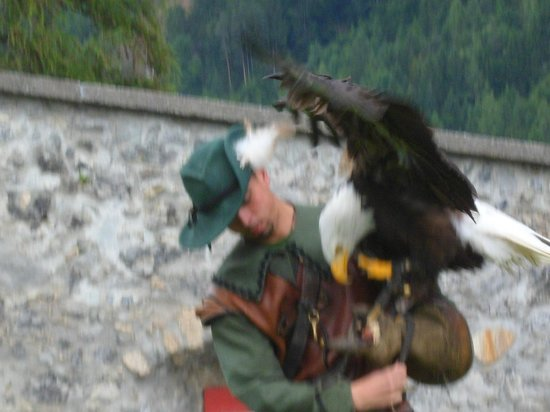 Erlebnisburg Hohenwerfen: a bird in the hand is a happy bird