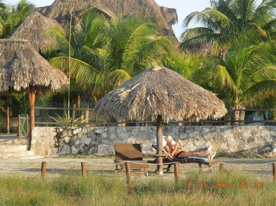 Beach Guesthouse Holbox Apartments & Suites: Holbox Apartments, with sunbathing in the garden