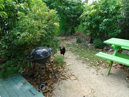 Eldemire's Tropical Island Inn: Our own privat backyard with chairs, table and BBQ...plus chickens roaming around!