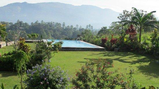 Elegant Hotel: pool