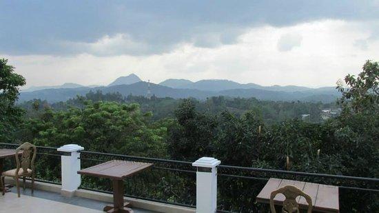 Elegant Hotel: view