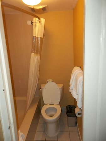 Travelodge Silver Spring : bathroom was okay