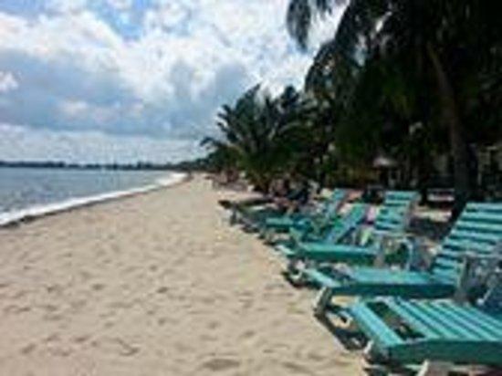 Seaspray Hotel: Beach
