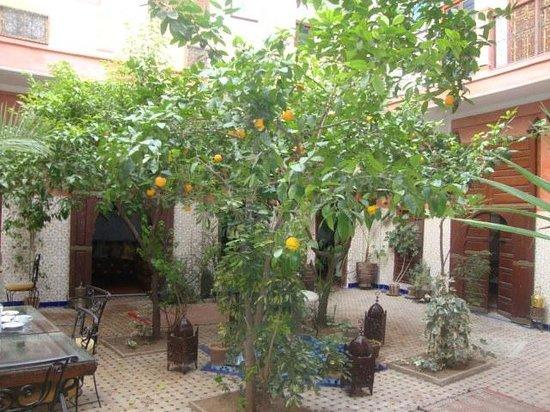 Dar Moulay Ali : Innenhof ( zum Aufenthalt/ Essen)