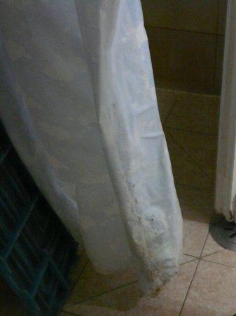 Hotel Duilio: douche